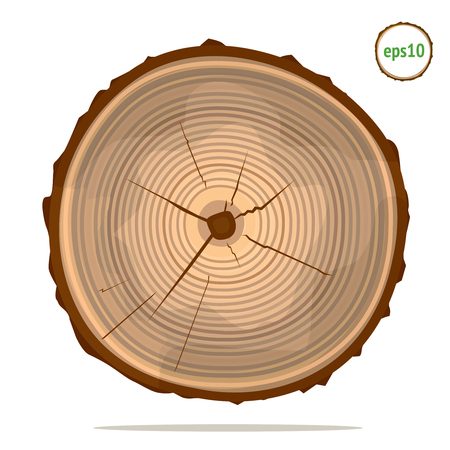 log: Tree-rings on log
