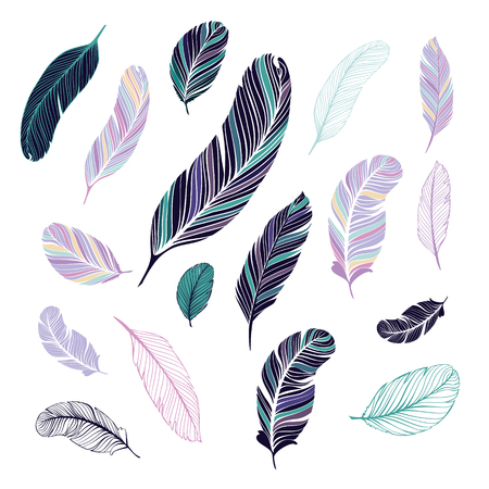 pluma: Plumas oscuras y la luz de color.