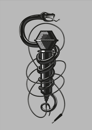 heavy metal: Rock music poster with a snake and microphone.
