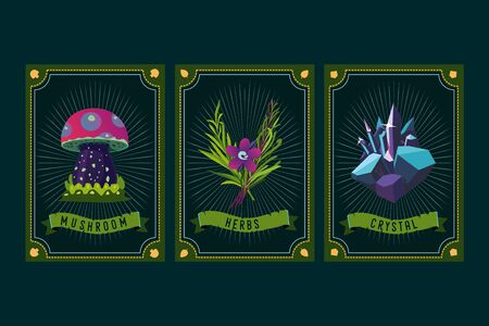 Game asset pack. Fantasy card with magic items. User interface design elements with decorative frame. Mushroom, crystal and plants. Cartoon vector illustration.  イラスト・ベクター素材