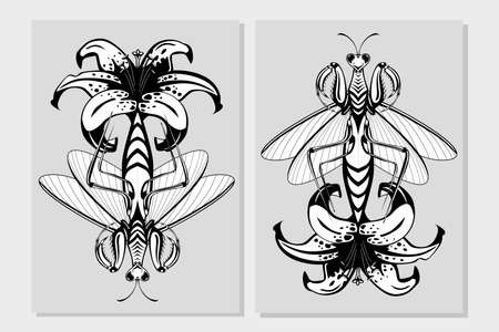 Mantis insect with lily flower. Flora and fauna vintage print. Tattoo style illustration print with plant and bug.