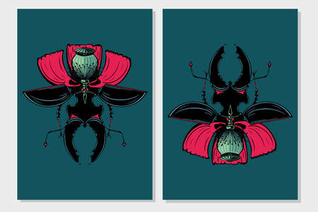 Stag beetle insect with poppy flower. Flora and fauna vintage print. Tattoo style illustration print with plant and bug.