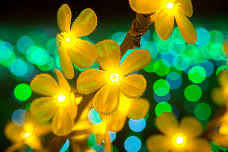 blinking: Yellow flowers blinking with colorful beautiful bokeh Stock Photo