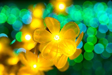 カラフルな美しいボケ味を持つ点滅黄色の花