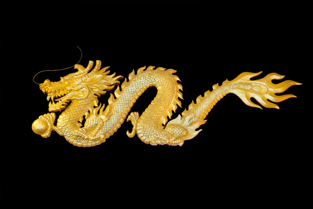 The sculpture of wooden fly golden dragon the symbolic of wealth and powerful in chinese belief isolated on black with path