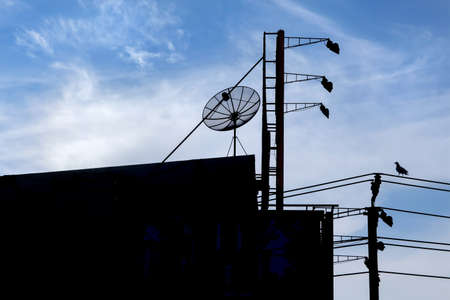 Silhouette of communication - from the past pigeon to now satellite dish 스톡 콘텐츠