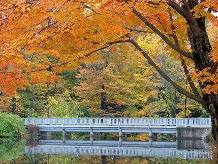 A bridge over a pond in autumn photo