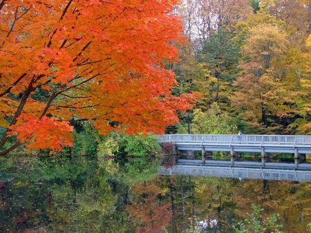 A bridge over a pond in autumn