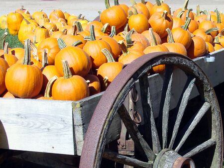 decorate: Pumpkins decorate a wagon at the farmstand