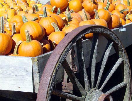 A pumpkin wagon at the farmstand Archivio Fotografico