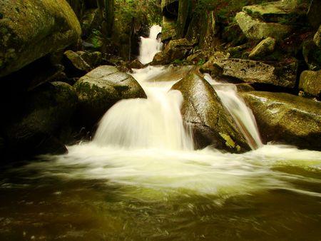 A mountain cascade in summer