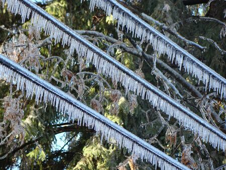 immobile: Ice glaze after the storm