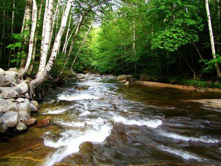 A river runs through the mountains during summer Archivio Fotografico