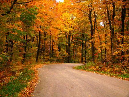 秋に国の道路 写真素材