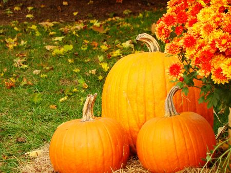 Pumpkins and mums and a country store