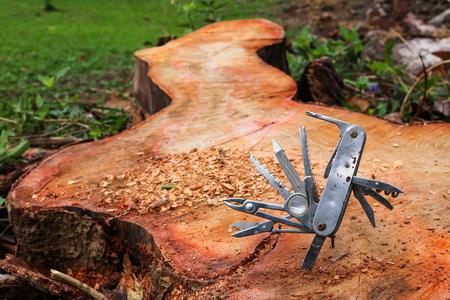 temperino: coltello multifunzione bloccato sul ceppo d'albero.