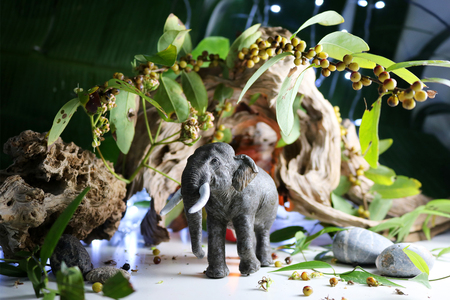 Elephant model. Concepts with Animals models ,Drift wood, green leaf, candles, and lighting.