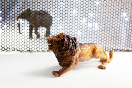 The Lion and Elephant model. Concept shooting model animals through steel grating and backgrounds, including blur lens in some parts.