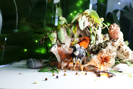 The Lion and Cow model, Concept with animals model, drift wood , leaves, seeds, and candles