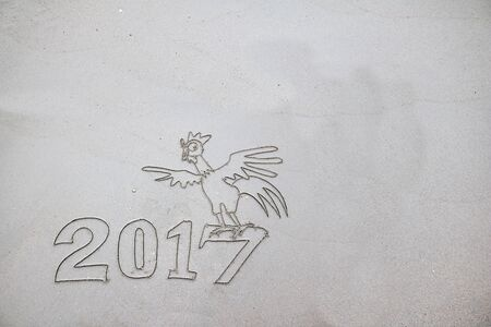 next year: 2017 year of the rooster, write on the sand on the beach.