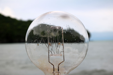 Light bulb with natural views.