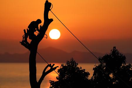 로컬 트리 산악인 손으로 묶어 밧줄을 사용 하여 지원 하여 지사를 절단 하 고 지원, 붉은 하늘 일몰 배경입니다. 스톡 콘텐츠 - 86437153