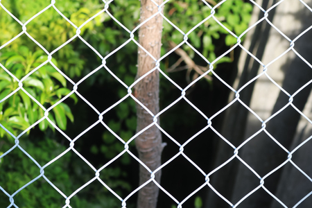 Steel mesh blocked trees, rocks and natural. The cage and view of the nature. Stock Photo