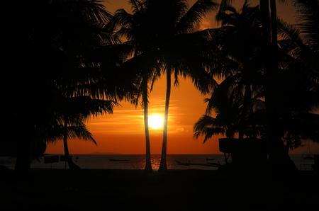 Coconut beach sunrise  early morning at Mu Ko Ang Thong Thailand