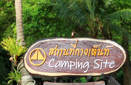 Kingfisher perched on Camping Site sign in the national park in Thailand,  Thai language means that camping area.