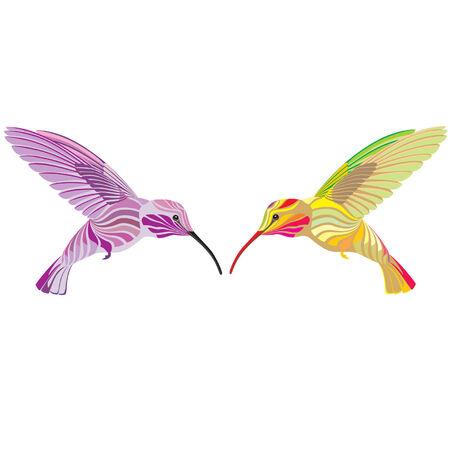pollinating: hummingbirds