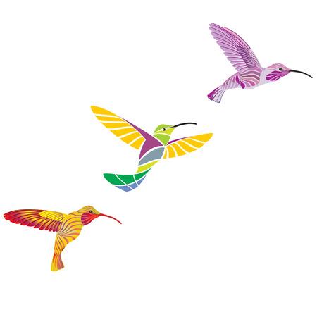 hummingbirds Stock Vector - 6199831