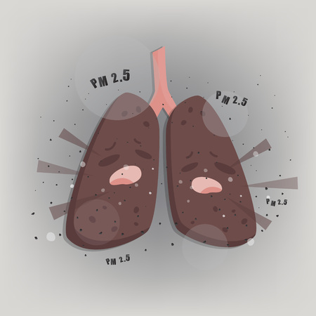 Terrible lung with Air pollution PM2.5.