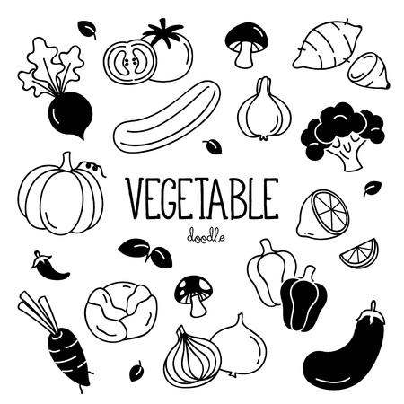 Hand drawing vegetables. Doodle vegetables.