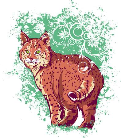 bobcat: Bobcat on a green background