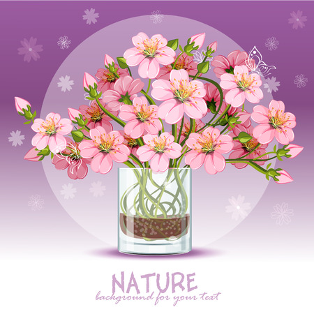Peach flower: Background with cherry blossom in a glass