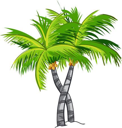 Cartoon coconut tree
