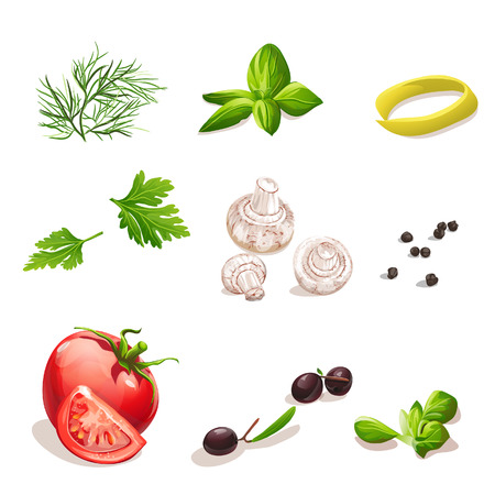 basil leaf: Set of vegetables on a white background dill, parsley, tomato, mushrooms, olives, basil, black pepper.