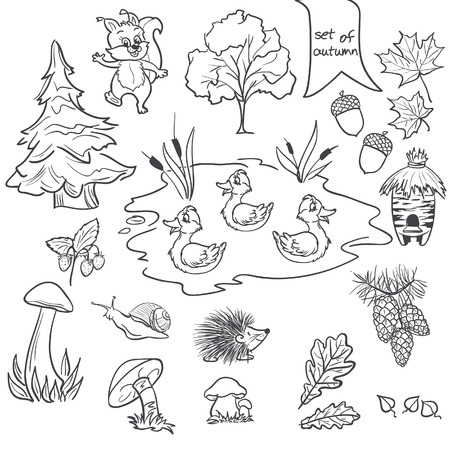 acorn seed: Contour set on a white background on a theme of autumn animals, trees, mushrooms, leaves