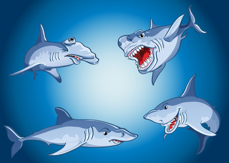 Set of scary sharks in cartoon style Vector