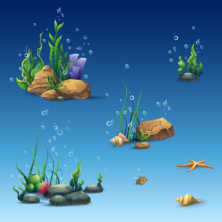 algas marinas: Kit del mundo submarino con cáscara, estrellas de mar, algas, piedras