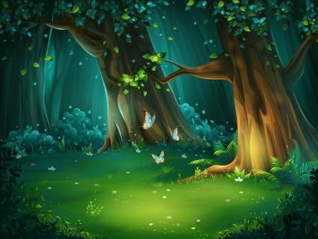 Vectorillustratie van een bosopen plek Stockfoto - 79099457