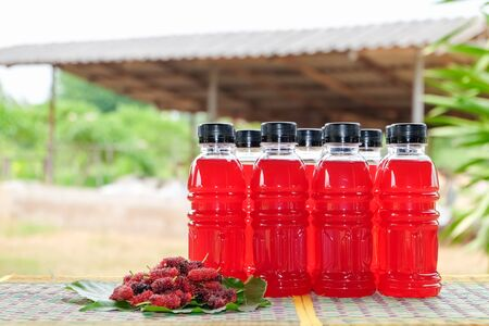 Refreshing mulberry juice in the bottles with berries on table, Healthy fruit, Organic fresh.-Healthy concept. 写真素材