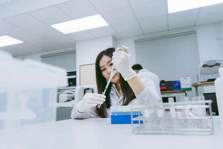 Young medical scientist working in medical laboratory , young female scientist using auto pipette to transfer sample Zdjęcie Seryjne