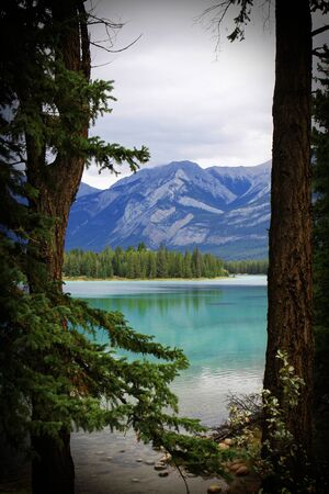 木 々の間の山の湖の素敵な写真
