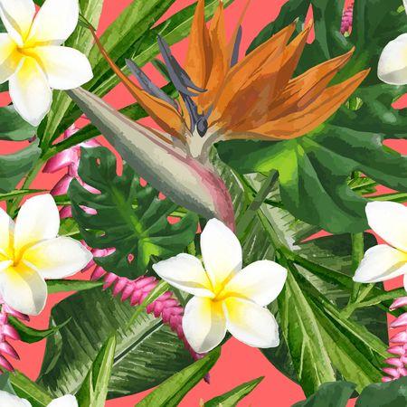 Tropical Dreams - Bird of Paradise
