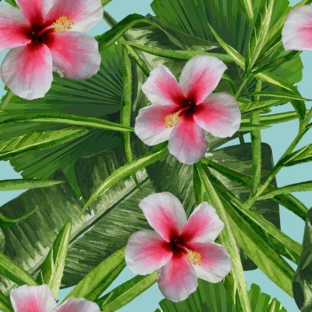 Tropical Dreams - Pink Hibiscus 写真素材