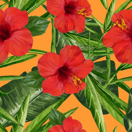 Tropical Dreams - Red Hibiscus