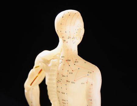 traditional chinese medicine: cuadro 3 de la acupuntura, demostrando los puntos importantes en medicina china tradicional Foto de archivo