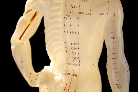 acupuncture figure 2, showing points important in traditional chinese medicine