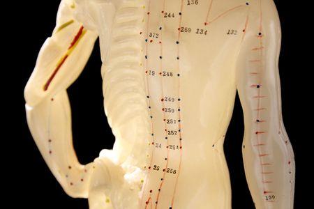L'acupuncture la figure 2, montrant les points importants dans la médecine traditionnelle chinoise  Banque d'images - 792289